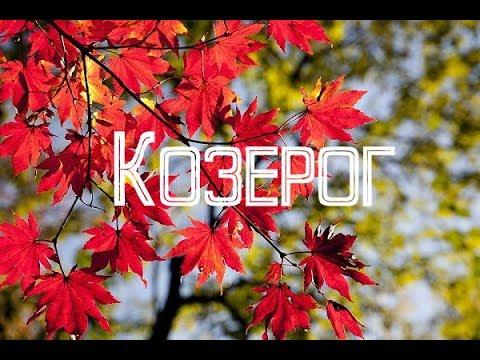 Гороскоп на неделю с 22 по 28 октября 2018 года Козерог
