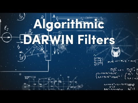 Coding Algorithmic DARWIN Filters | Algorithmic Trading & Investing with the DARWIN API