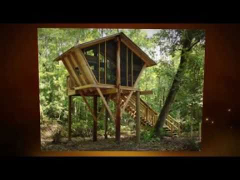 Tree House Camping Youtube