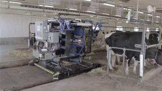 Robot de traite Roboléo de Milkomax