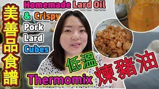 Thermomix美善品食譜  自製豬油和豬油渣  How to Render Lard Crispy Pork Lard 美善品 美善品多功能料理機【euniceliciousTV】