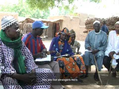 Farmer managed natural regeneration of trees in the Sahel, Africa