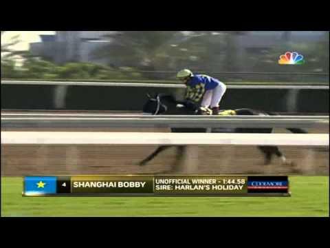 03.11.2012 Santa Anita Park (USA) 8.Race Grey Goose B.C. Juvenile 2012 - Group I 1.770 m