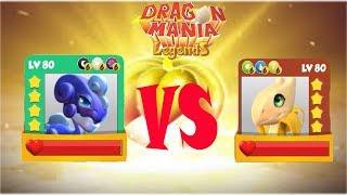 ENCHANT DRAGON BATTIE | STARUST VS Banana LV 80 VS 80 - Dragon Mania Legends | part 789 HD
