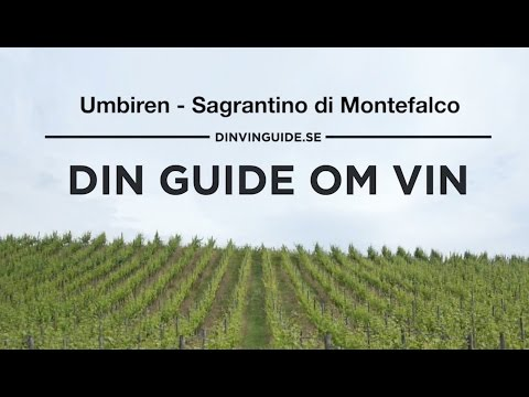 DinVinguide.se på besök i Montefalco på Sagrantino Anteprima 2011