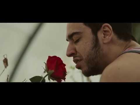 Trailer Como yo te amo