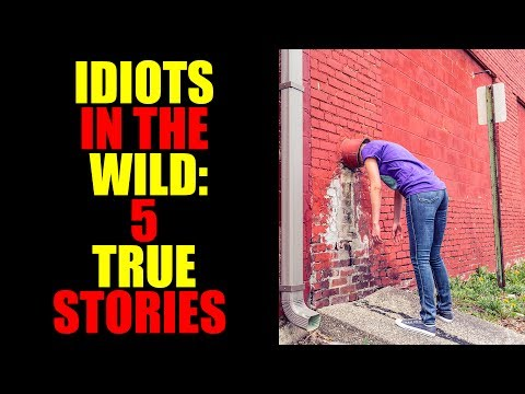 IDIOTS IN THE WILD: 5 TRUE STORIES