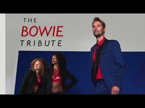 Trailer The Bowie Tribute