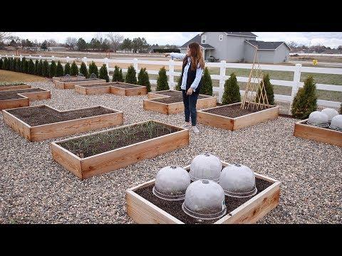 Vegetable Garden Tour 🥦🥒🌶// Garden Answer