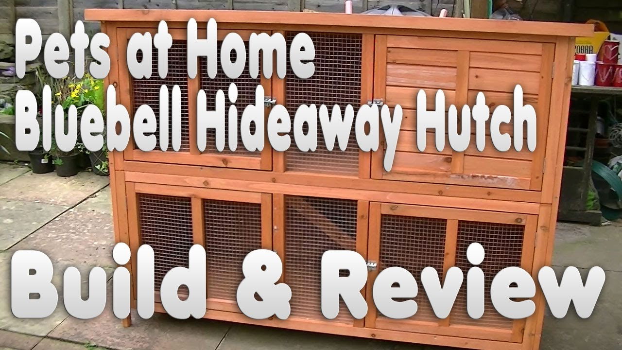 Bluebell Hideaway Rabbit Guinea Pig Hutch Review Unboxing How To Build Pets At Home