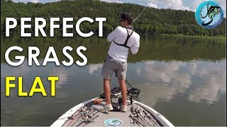 How to Find Summer Bass on Grass Flats Mp3