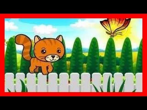 Wlazł kotek na płotek BZYK.tv