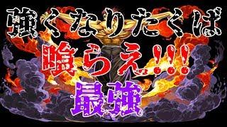 【パズドラ】範馬勇次郎(豪鬼)の火力が地上最強やった!!【異形の存在】