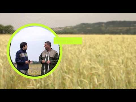 Supporting the development of organic farming in the Ile-de-