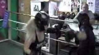 boxing girl #2 sparing