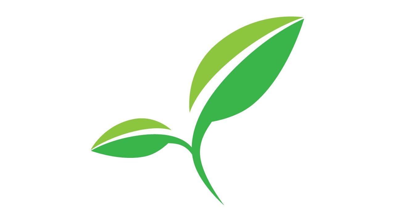 Tutorial Illustrator | How to make leaf - YouTube