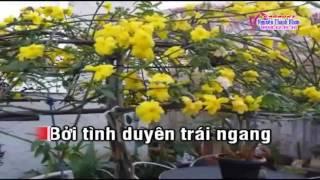 Karaoke tan co DUONG TINH DOI NGA 2 - SONG CA