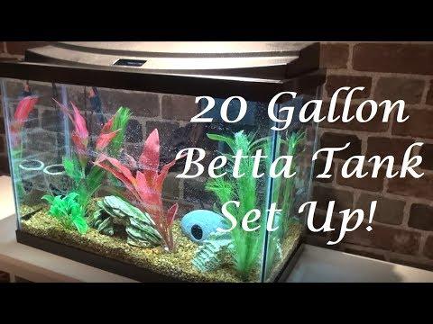 Setting Up My Betta Tank! | Topfin 20 Gallon Aquarium Kit