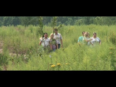 Сюжет ТСН24: Многодетным семьям дают землю в Судаково