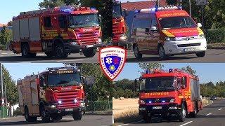 🚨 LF 20 + ELW + TLF 24/50 Berufsfeuerwehr Dessau-Roßlau + HLF 20/16 Feuerwehr Dessau-Roßlau Süd