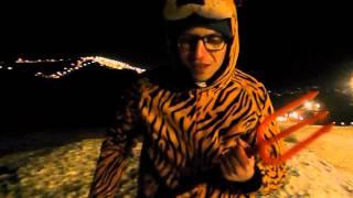 WIGILIJNY TIGER