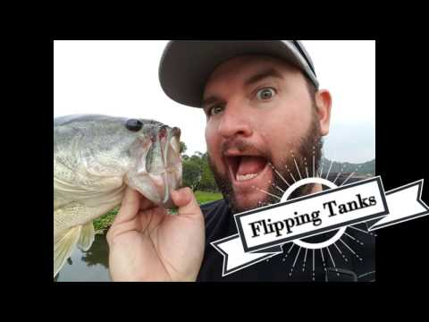 Flipping For Tanks!  South African Bass Fishing