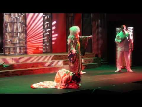 """Madama Butterfly"" Glows with Power and Beauty"