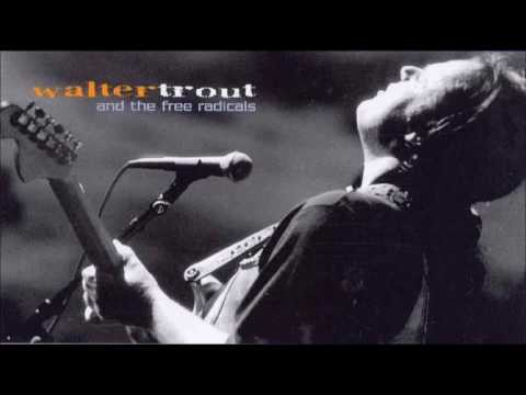 WALTER TROUT & The Free Radicals - The Reason I'm Gone