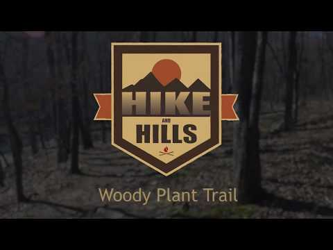 Traverse the Woody Plant Trail
