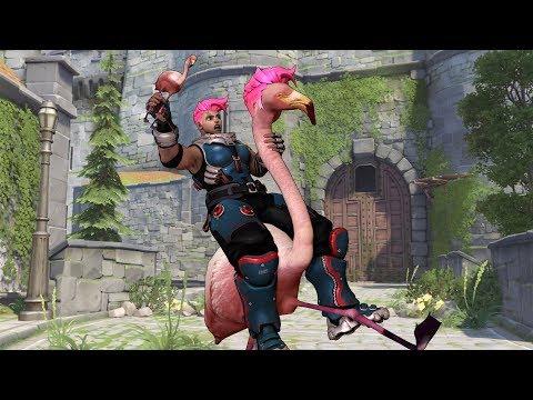 Overwatch: Flamingo Like Reflexes