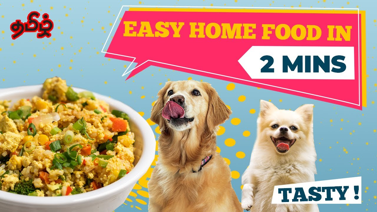 Healthy Homemade Food  In Just 2 Minutes | Dogs Will  Enjoy It | Tamil