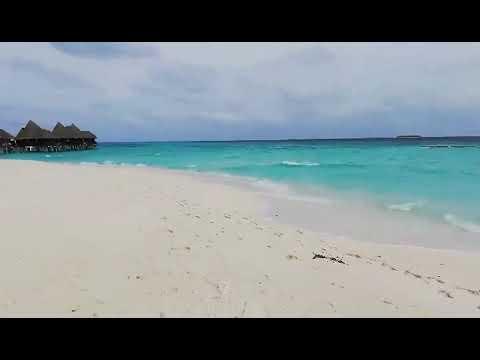 Coco Palm Dhuni Kolhu Ocean Front Villa Nr 36 Beach