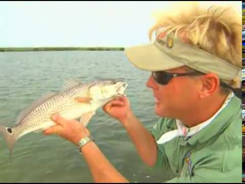 REDFISH fishing with DOA shrimp Indian River Titusville Florida