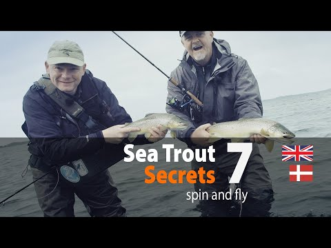 Sea Trout Secrets 7 Spin And Fly