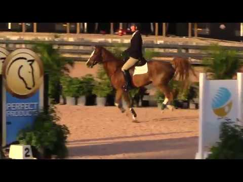 Karlton & William Hickey  5 Year Old Jumpers
