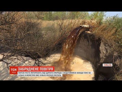 Жителі Конотопа потерпають від їдкого смороду з місцевого спиртзаводу
