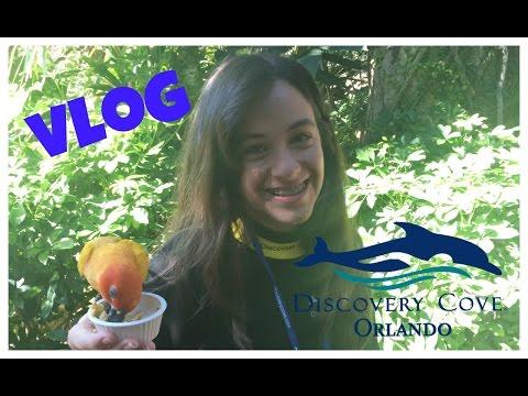 Vlog Discovery Cove Orlando - Carol Santina
