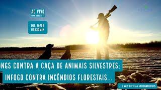 ONGs contra a caça de animais silvestres; InFogo contra incêndios florestais e mais...-VERDE MAR #58