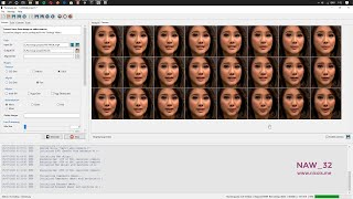 Faceswap Deepfakes Tutorial f๐r Noob (AMD Radeon RX 570)
