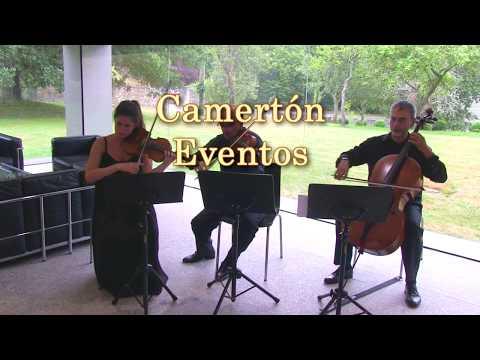 Camertón Eventos Musicales