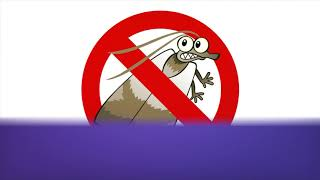 OCP Bee Removal Tampa FL - Bee Control Service In Tampa