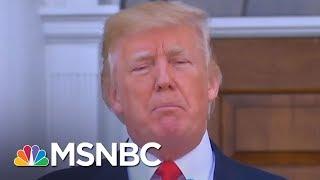 32 Tweets That Encapsulate President Donald Trump's First Year | Morning Joe | MSNBC