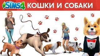 Как установить The Sims 4 КОШКИ И СОБАКИ? Решение проблем с zlOrigin