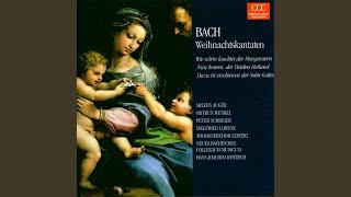 """Dazu ist erschienen der Sohn Gottes, BWV 40: """"Die Schlange, so im Paradies"""""""