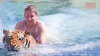 6 Persahabatan Menegangkan Antara Manusia Dengan Hewan Predator