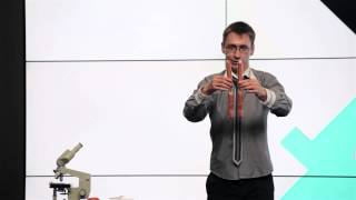 видео ботаника это раздел науки о