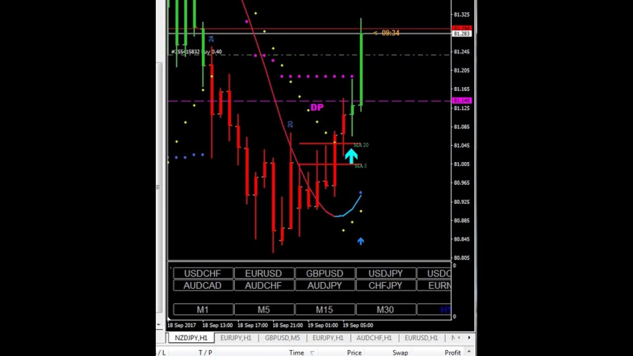 Forex holy grail system