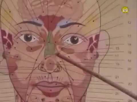 Где зона молочной железы на лице! Огулов А. Т.