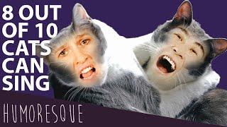 Cat Duet by Rossini-Johanna von der Deken and Hyung-ki Joo
