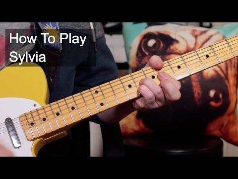 'Sylvia' Focus Guitar Lesson